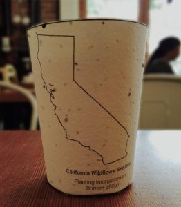 Paper cups with plant seeds embedded in them can be the ultimate solution to giving back what we take from nature.